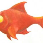 poisson-anouk